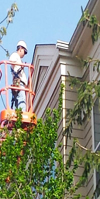 Property maintenance by Reston Painting & Contracting