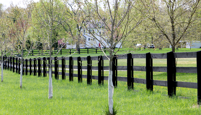 RPC fence building
